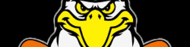 Lastesarja_logo_250